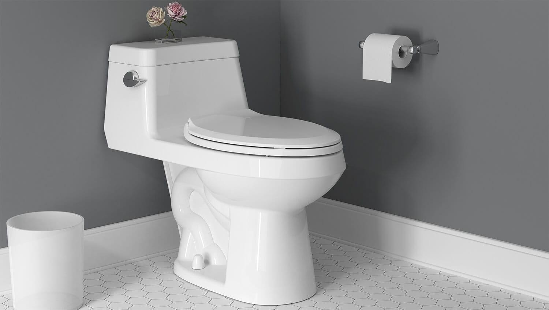 colony toilet in white