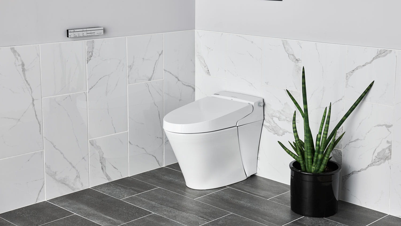 About Bidet Toilets