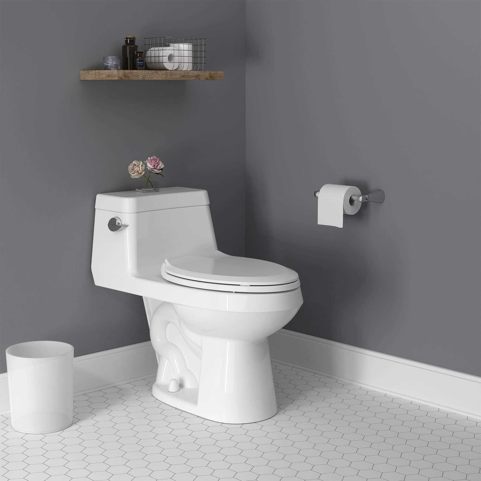 Colony One Piece Toilet
