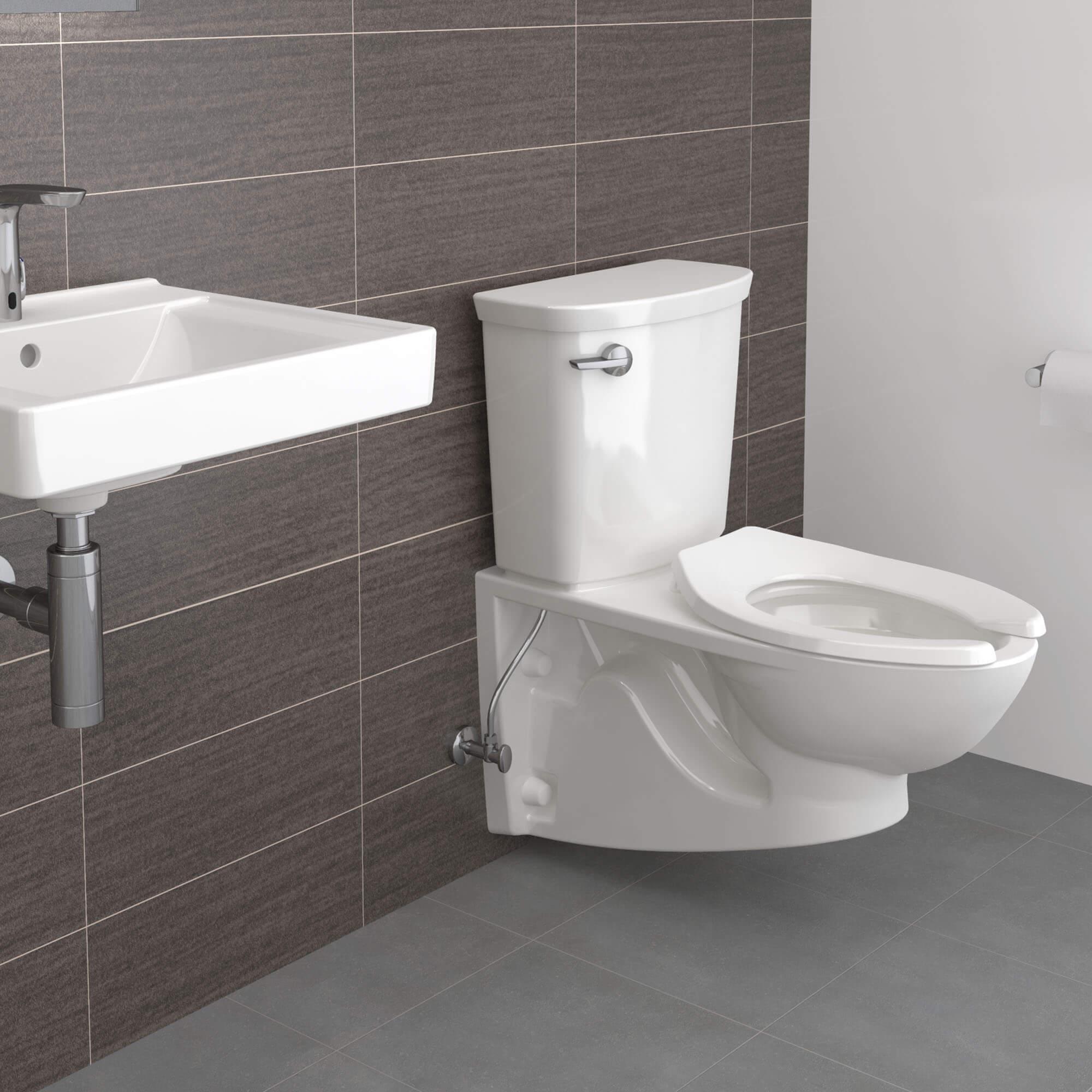 Glenwall Wall Hung Toilet