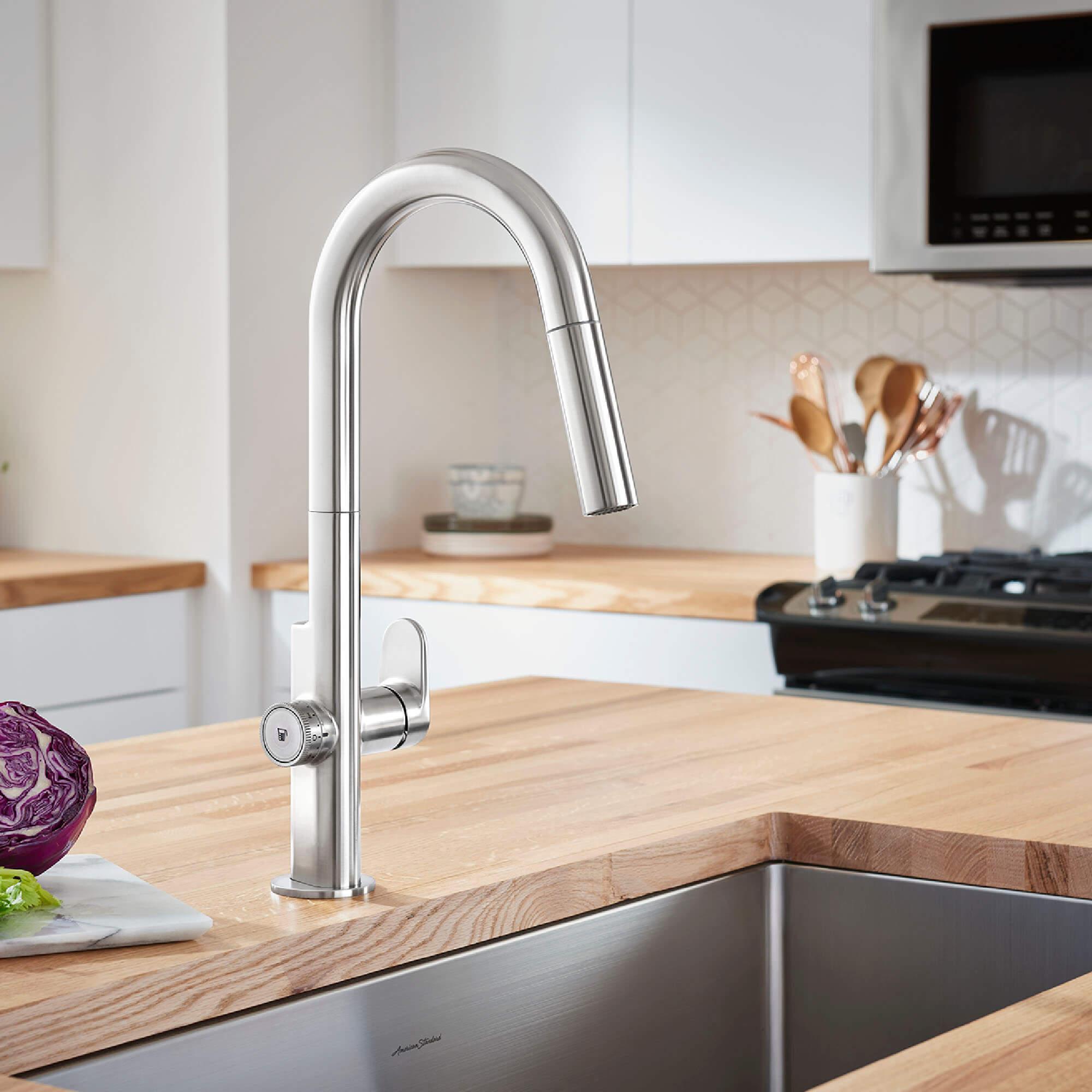 Beale Measure Fill Kitchen Faucet