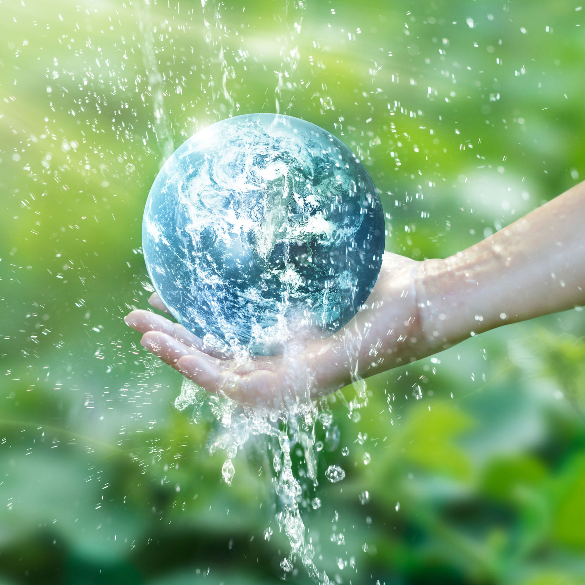 go green with sustainability