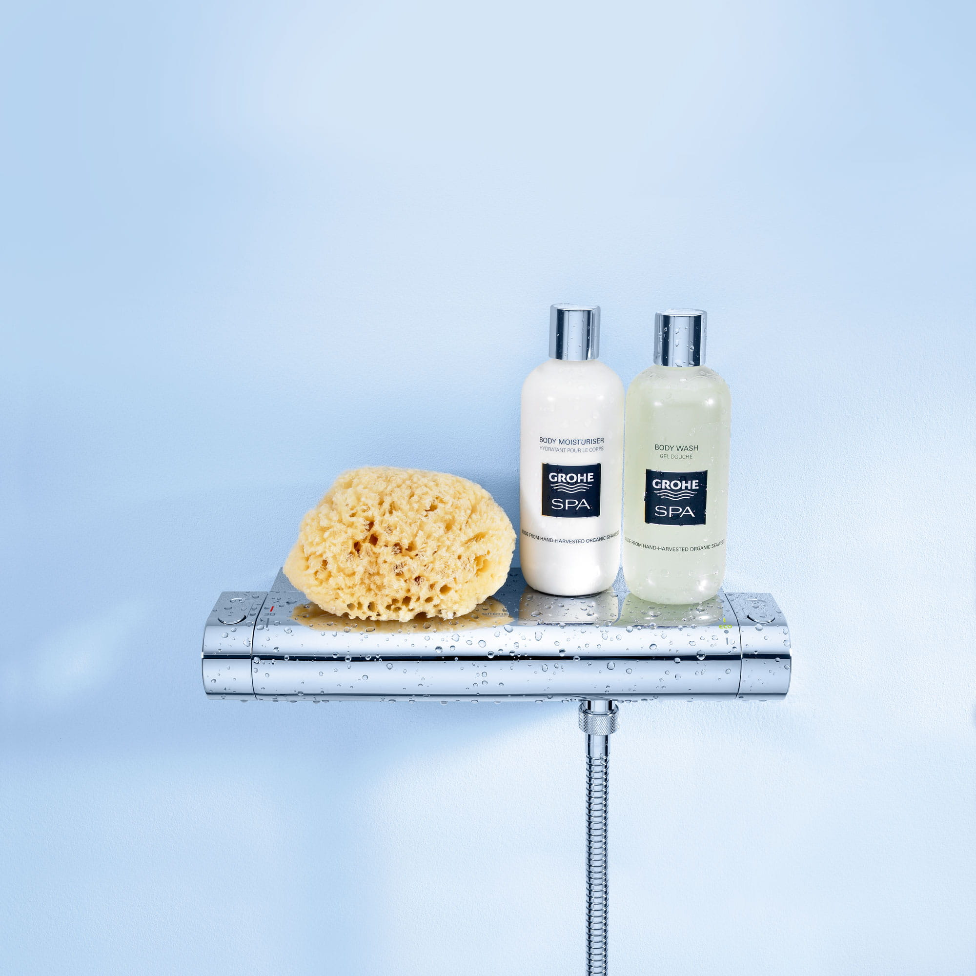 bottled soap & loofah standing on shelf